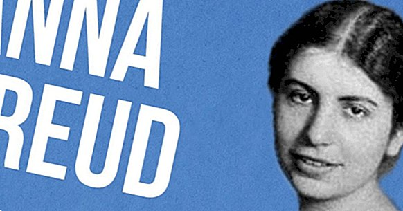 Anna Freud: biographie et travaux du successeur de Sigmund Freud
