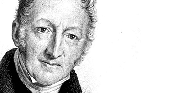 Thomas Malthus: biografia tohto výskumníka v politickom hospodárstve