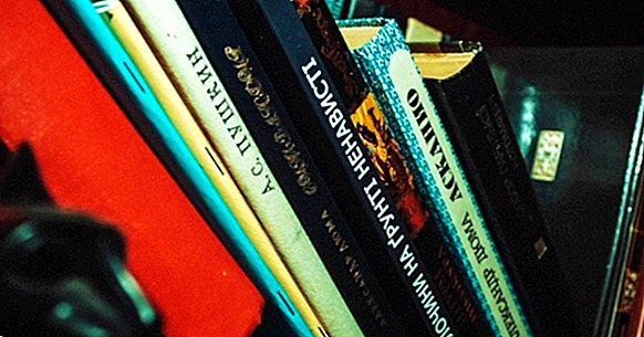 The 16 types of books that exist (according to different criteria)