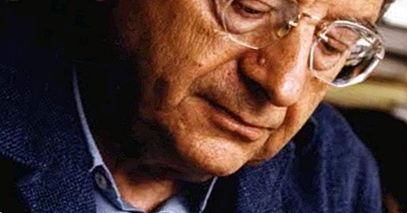 75 phrases of Erich Fromm to understand his thought