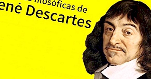 85 Phrases By René Descartes To Understand His Thinking