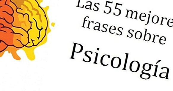 The 55 best sentences about Psychology ... and its meaning