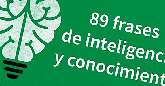 89 phrases about intelligence and knowledge