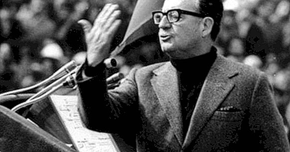 54 phrases of Salvador Allende to know his thoughts