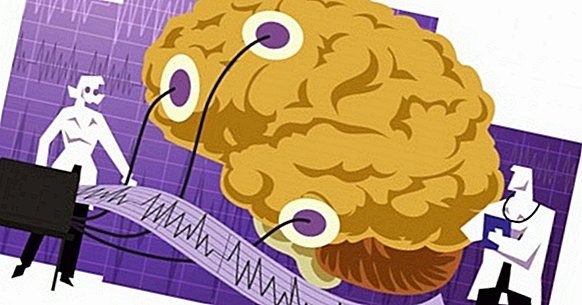 The 5 main technologies for the study of the brain