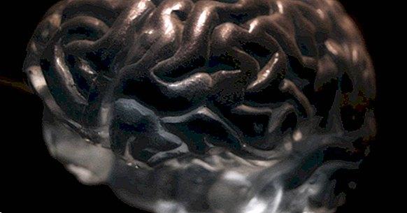 Τα 4 μεγάλα ολοκληρωτικά μοντέλα στην ψυχολογική θεραπεία
