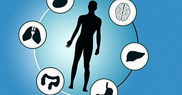 The differences between syndrome, disorder and disease