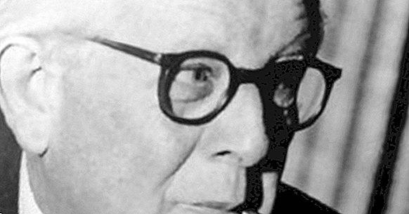 Die Theorie des Lernens von Jean Piaget