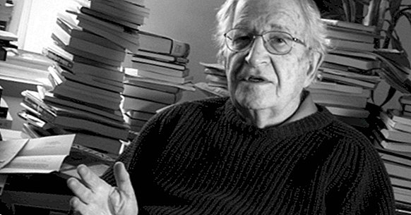 The theory of language development by Noam Chomsky