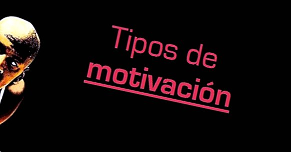 Types de motivation: les 8 sources de motivation
