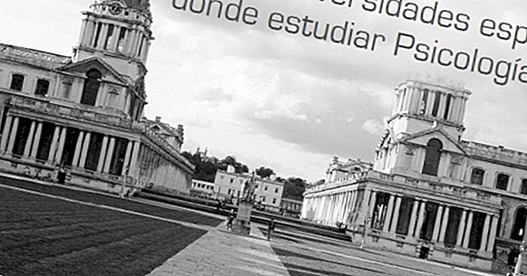 स्पेन में मनोविज्ञान का अध्ययन करने के लिए 10 सर्वश्रेष्ठ विश्वविद्यालय