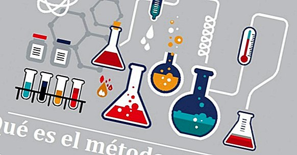 What is the scientific method and how does it work?
