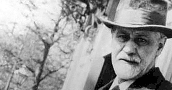 The 5 stages of the psychosexual development of Sigmund Freud