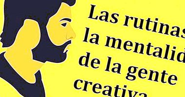 The routines and the mentality of creative people - cognition and intelligence