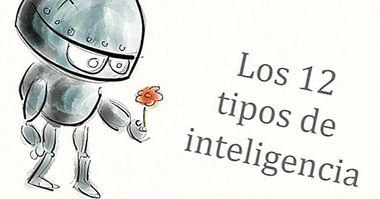 The 12 types of intelligence: which one do you own? - cognition and intelligence