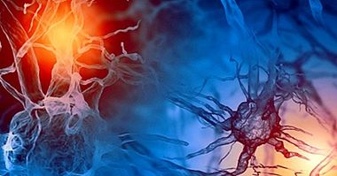Types of hormones and their functions in the human body - neurosciences