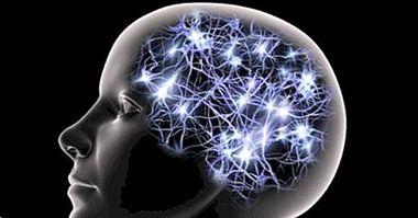 neurovědy