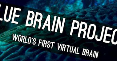 Blue Brain Project: rebuilding the brain to understand it better - neurosciences