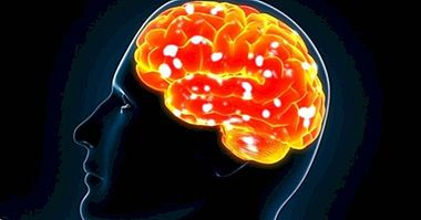 The personality could be regulated by the immune system - neurosciences